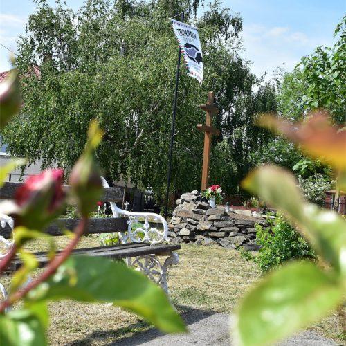 domoszlo-vitez-park-3